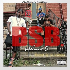 troy_ave_presents_bsb_vol_5_front_large_15